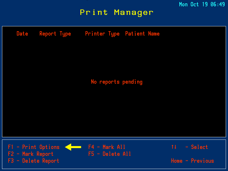 2 - Print Manager - Print Options